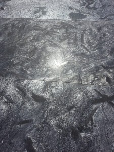 Kwarcyt Silver Slate Honed 30x60 gr.12mm